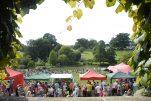Bennington Lordship Chilli Festival 2021